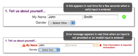 Form field error handling